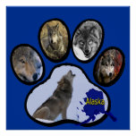 Alaskan Wolf Paw Print