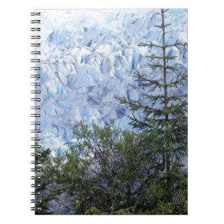 Alaska's Beauty Notebook