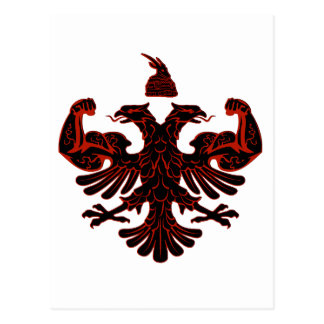 Albanian Power Postcard
