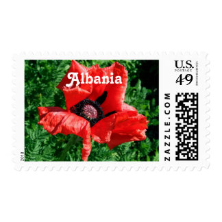 Albanian Red Poppy Postage Stamp