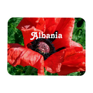 Albanian Red Poppy Rectangle Magnets