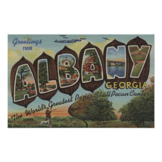 Albany, Georgia - Large Letter Scenes Poster