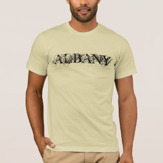 Albany, New York and/or Georgia T-Shirt