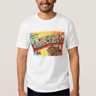 Albany New York NY Old Vintage Travel Souvenir T Shirt
