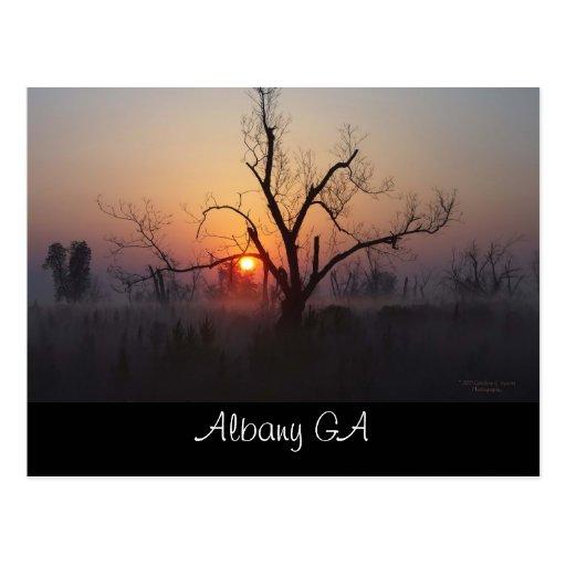 Albany Sunrise Postcard