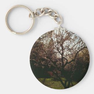 Albaricoque de florecimiento llavero redondo tipo pin