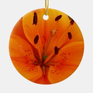 Albaricoque delicioso floral adorno de reyes