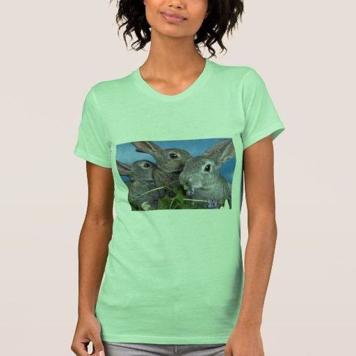 Albaricoque y conejo azul de Rex Camisetas