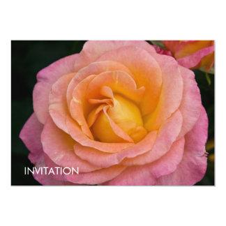 """Albaricoque y DSC3444 color de rosa rosado Invitación 5"""" X 7"""""""