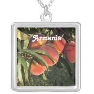 Albaricoques armenios joyerias personalizadas