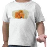 Albaricoques para el uso en los E.E.U.U. Camiseta