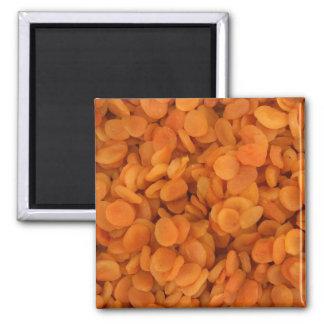 Albaricoques secados imán cuadrado