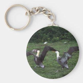 Albatros agitado, agresión territorial llavero personalizado