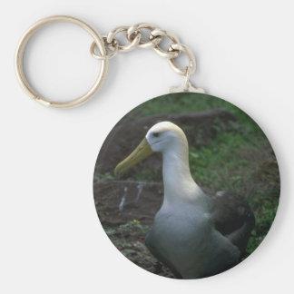 Albatros agitado en el huevo llaveros