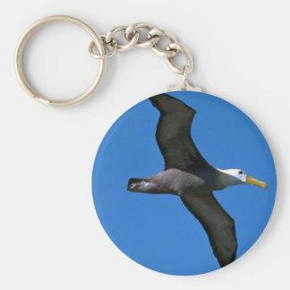 Albatros agitado en vuelo llaveros personalizados