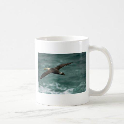 Albatros agitado en vuelo taza de café