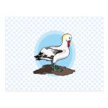 Albatros de Arnold Postal