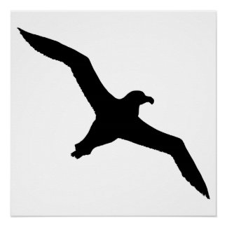 Albatros Perfect Poster