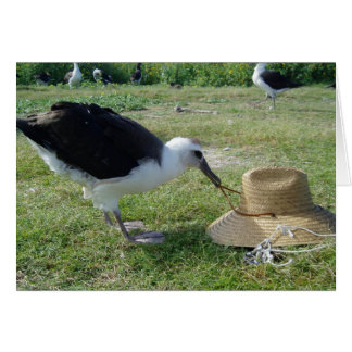 Albatross and Straw Hat Card