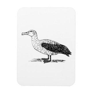 Albatross Bird Art Flexible Magnet