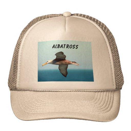 Albatross Flying Mesh Hats