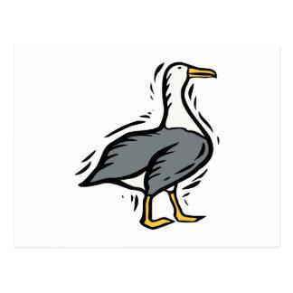 Albert Albatross Post Cards