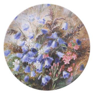 Albert Dürer Lucas: Harebells y Centaury Plato Para Fiesta