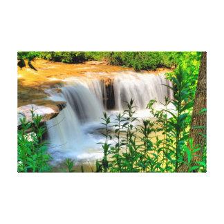 Albert Falls, West Virginia Canvas Print