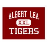 Albert Lea - Tigers - High - Albert Lea Minnesota Post Card
