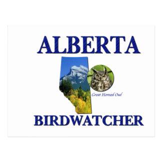 Alberta Birdwatcher Postcard