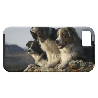 Alberta, Canada 2 iPhone SE/5/5s Case