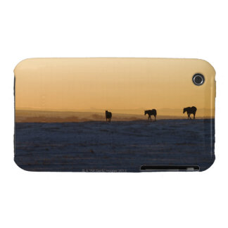 Alberta, Canada 3 Case-Mate iPhone 3 Case