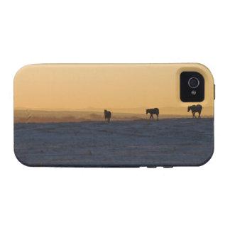 Alberta, Canadá 3 Vibe iPhone 4 Fundas