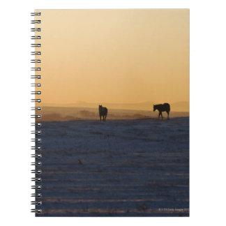 Alberta, Canada 3 Notebook
