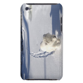 Alberta, Canadá iPod Case-Mate Carcasa