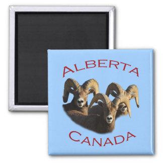 Alberta, Canada Magnet