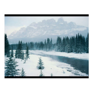 Alberta Snowy Scene Postcard