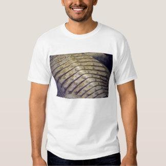 albino alligator back scales t-shirts