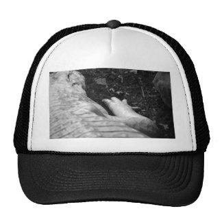 albino alligator right side black and white mesh hat