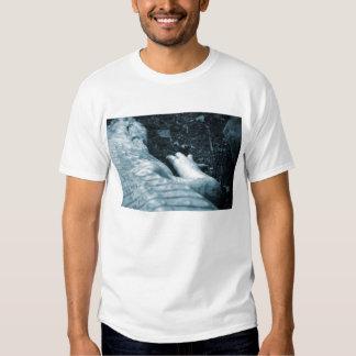 albino alligator right side blue tint animal shirts