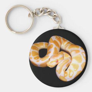 Albino Ball Python Key Chain