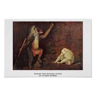 Albino del babuino y del Macaque de Stubbs George Posters
