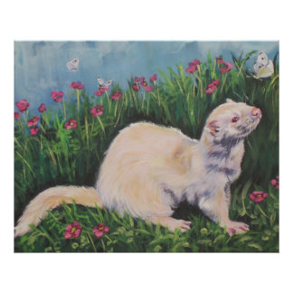 Albino Ferret Fine Art Print