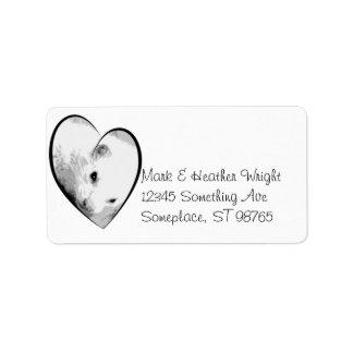 Albino Ferret Picture Address Label