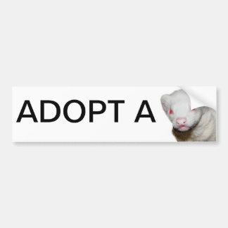 Albino Ferret Picture Bumper Sticker