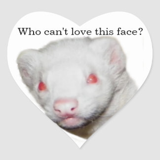 Albino Ferret Picture Heart Sticker