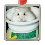 Albino Hamster Photo Metal Ornament