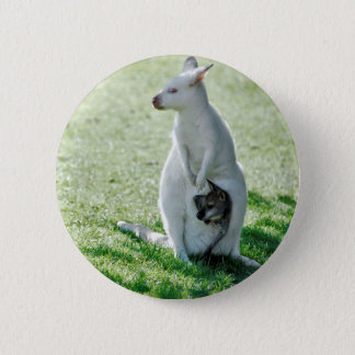 Albino kangaroo and its little pinback button