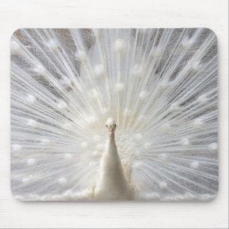 Albino Peacock design Mouse Pad