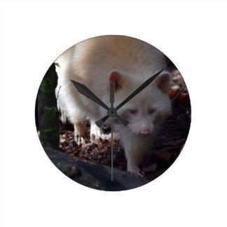 Albino Raccoon Clock